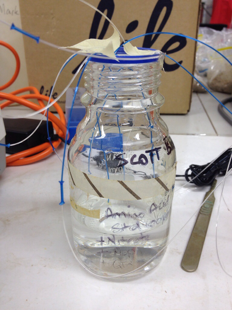 My bottle-o-nitrogen, wired up with the probes.